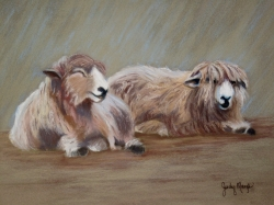 Contented Sheep $1075 23X19